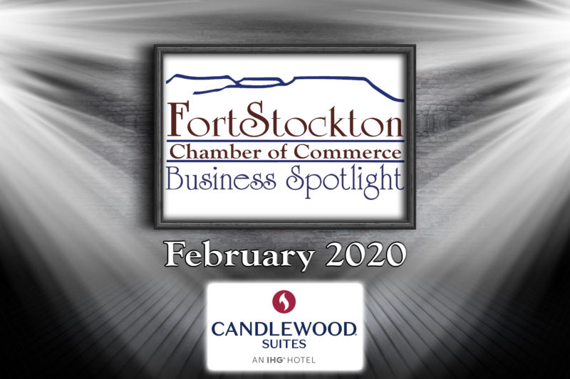 February 2020 Business Spotlight